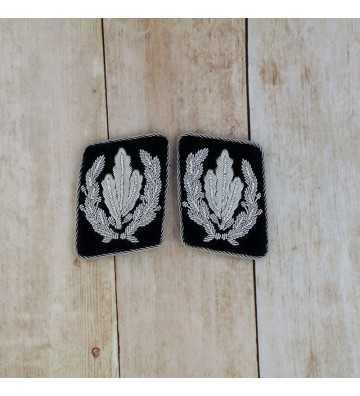 Reichsführer-SS collar tabs