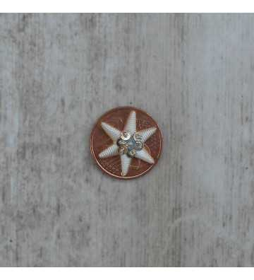 Embroidered silver star in thread